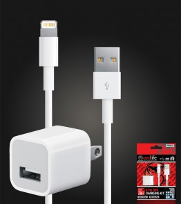 8 Pin USB house charging kit